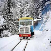 Shimla - Kufri - Chail - Chandigarh Tour