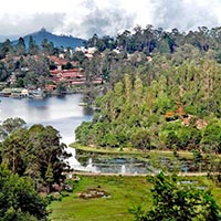 Bangalore - Mysore - Ooty - Kodai Tour Package
