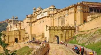 Rajasthan India Wildlife Tour