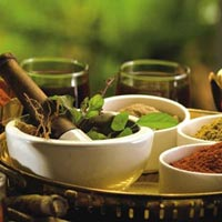Ayurveda Tour by Travel Support