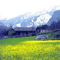 Himachal Experience Tour