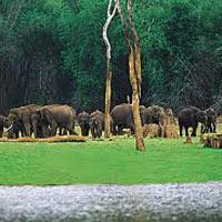 Kerala at a Glance Tour