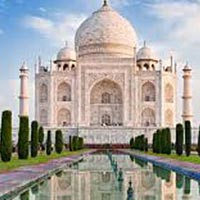 Taj Mahal& TigerTour