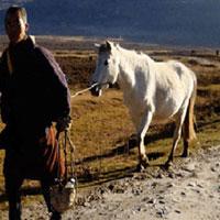 Peaceful Bhutan (Thimphu 2N - Wangdue / Punakha 2N - Paro 2N) Tour