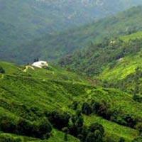 Himalayan Adventure Tours