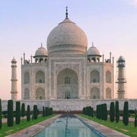 Taj & Tiger Tours