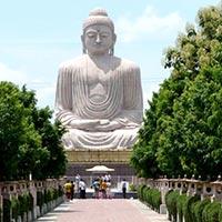 Lord Buddha Parikrama Tours