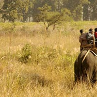 Wildlife Safari Tour in India