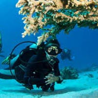 Port Blair - Havelock package
