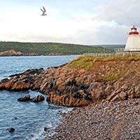 Viper Island North Bay Tour