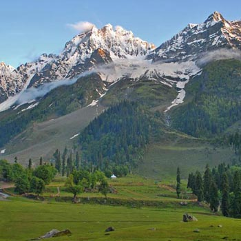 Kashmir  05 nights / 06 days Tour