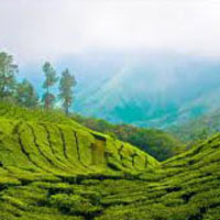 Ex. Kerala 7 Nights & 8 Days Package