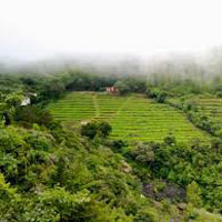 Ex. Bangalore Package - 5Nts/6Days