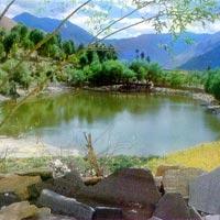 Shimla-Kinnaur-Lahaul Spiti Trip Tour