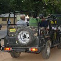 Kaziranga Tour