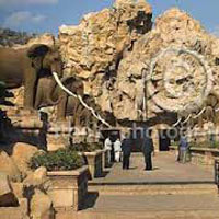 South Africa Summer Tour Package