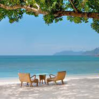 Best of Andaman Tour