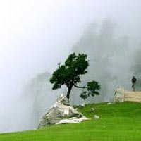 Day Hike to Triund Tour