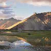 Camal Safari in Ladakh Tour