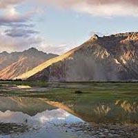 Camal Safari in Ladakh Tour