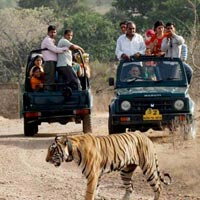 Golden Triangle with Ranthambore & Kanha Tour
