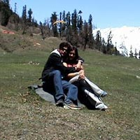 Himachal Honeymoon Tour (with Volvo)