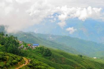 Mesmerize Darjeeling and Gangtok Tour