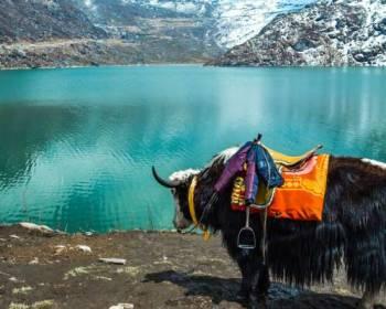 Tour Programme of Gangtok