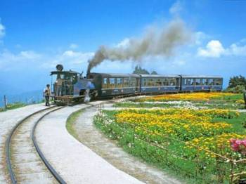 Tour Programme of Darjeeling and Sittong