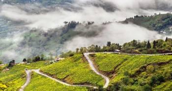 Tour Programme of Darjeeling