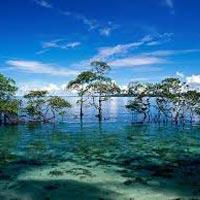 Andaman Holiday Packages/ Andaman Booking