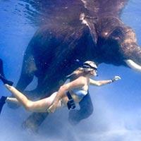 Leisure in Andaman Tour