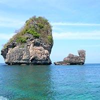 Elephanta Beach Coral Tour