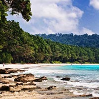 Andaman Beach Club Tours & Travels