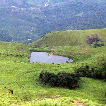 Banglore - Coorg - Mysore Tour