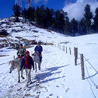 02 Nights/ 03 Days Shimla Tour package