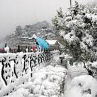 Shimla - Kullu - Manali Pacjage