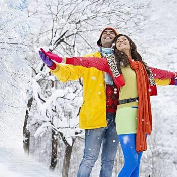 # Indiaholiday.co.in # Volvo Manali Honeymoon Tour