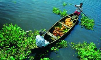 Kerala Tour with Kanyakumari from Pune Mumbai By Air