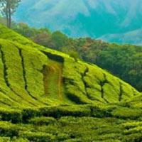 Kerala Kanyakumari 13 Days Tour