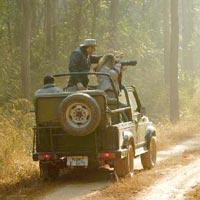 The Wild Tour Of (Madhya Pradesh)