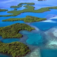 Andaman Business Outing Best Tour
