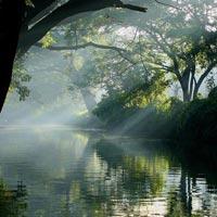 Heart of Andaman Tour