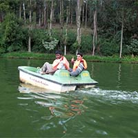 Ooty - Bangalore - Coimbatore Honeymoon Tour