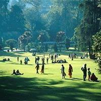 Honeymoon Holiday Tour in Ooty & Kodaikanal