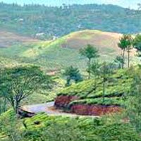 Kerala Holiday Tour package 7D 6N