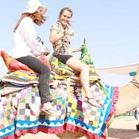 Kutch - Mount Abu 4N/5D Tour