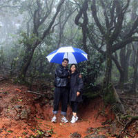 Mahabaleshwar 1 Day Tour