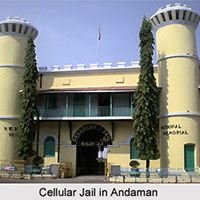 3 Star Andaman Package 5 Night / 6 Days