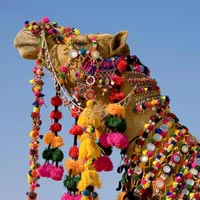 3* Star Heritage Tour In Rajasthan